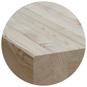 Ansicht Holz Lärche