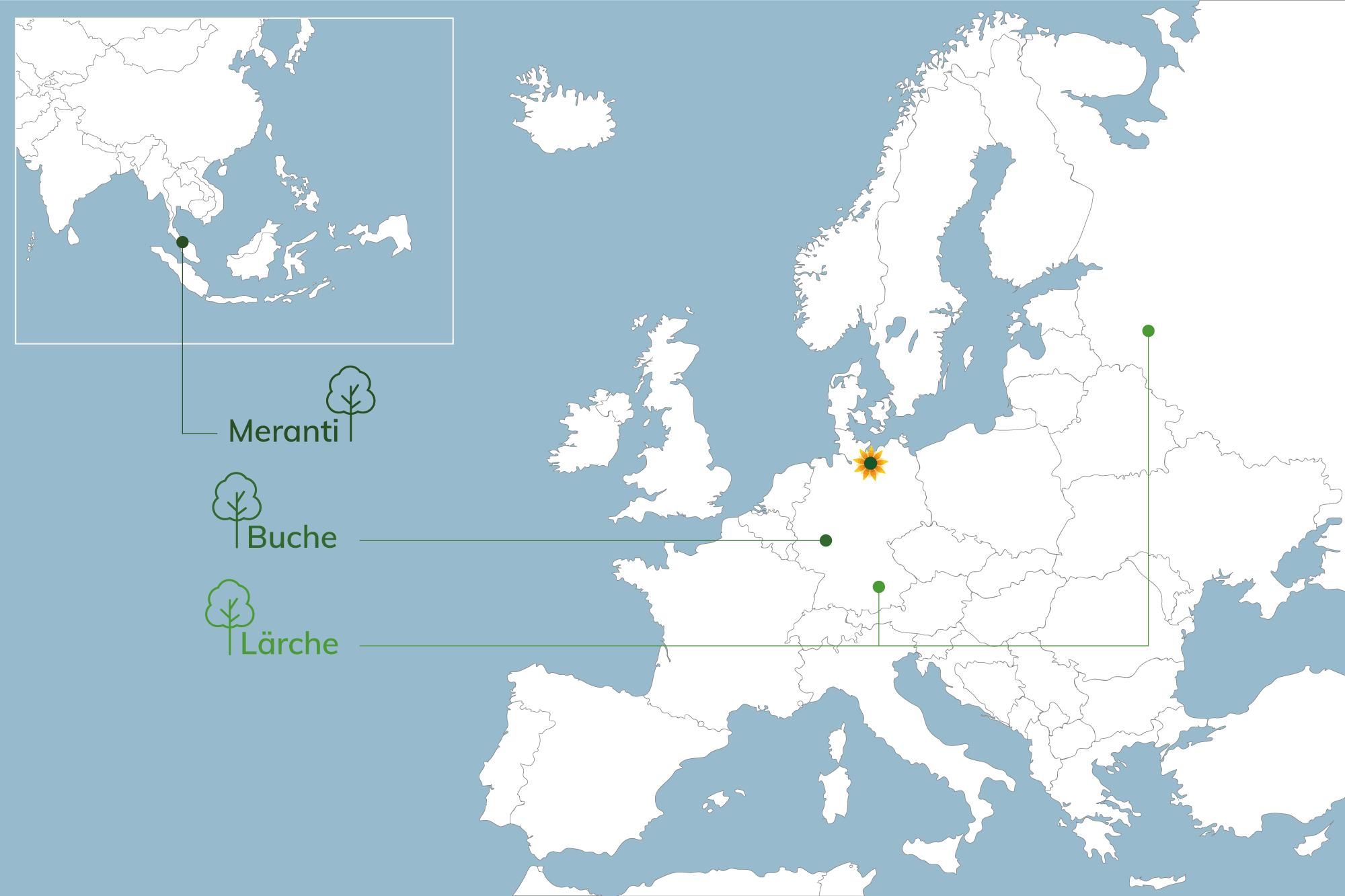 Karte - Herkunft des Holzes v. Schulze Braak