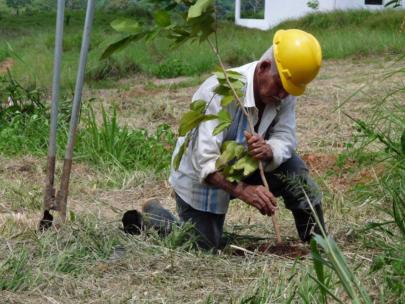 Wiederaufforstung Panama - Schulze Braak - Waldarbeiter